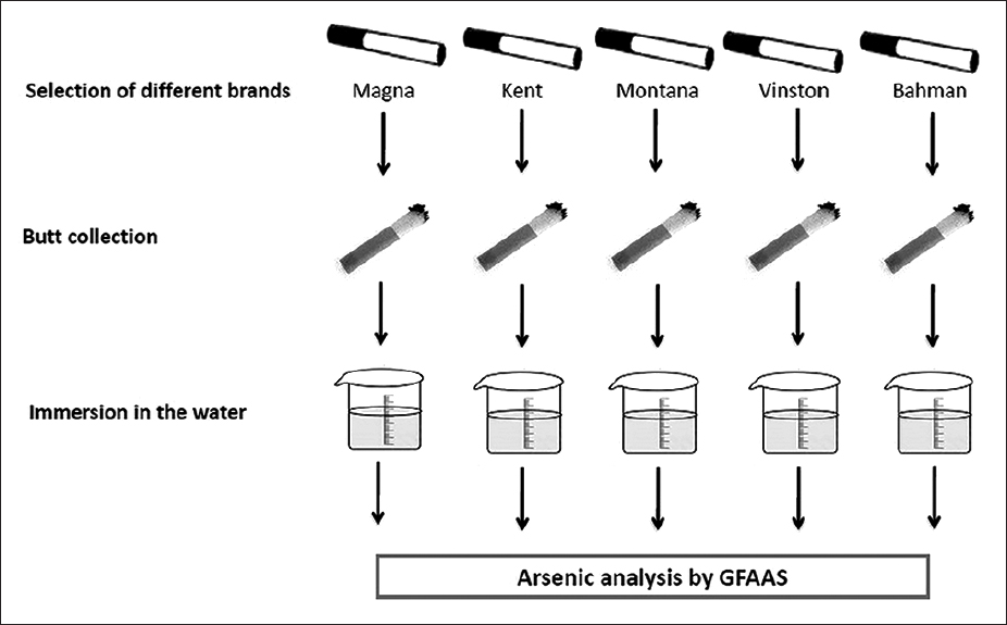 Figure 1: Schema of sample preparation for graphite furnace atomic absorption spectrometry